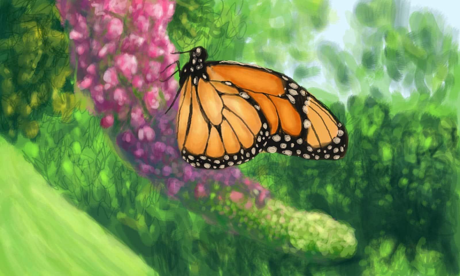 Monarch 3DS